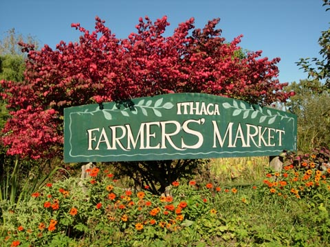 Outdoor Ithaca Market Returns